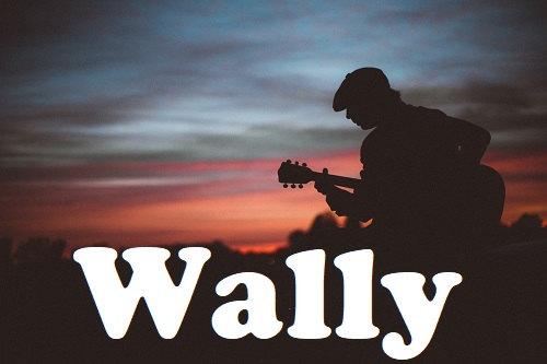 Wally 2019 Pic2 By Andreas Bradt 500 54902 Wally featuring Micky Wolf   Blues, Rock, Pop   Trio